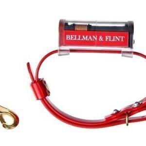 Bellman & Flint Panta Ladattava