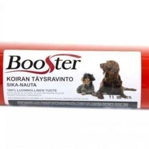 Booster koiran liha-ateria sika-nauta