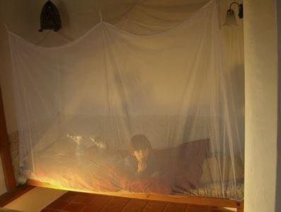Brettschneider standard moskiittoverkko