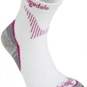 Bridgedale QW-IK Womens Pinkki L