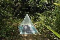 Cocoon InsectShield Camping Net single hyönteisverkko