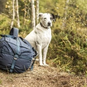 Fjällräven Duffel No 6 Medium Navy