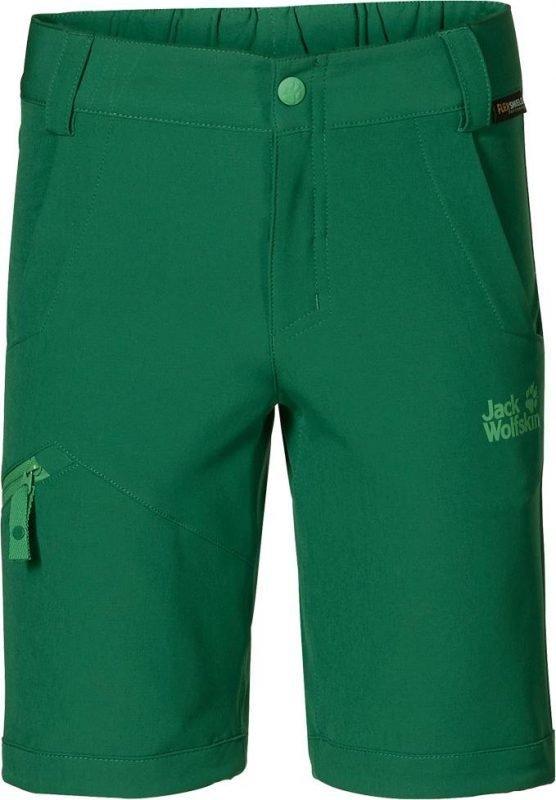 Jack Wolfskin Activate Softshell Shorts Vihreä 176