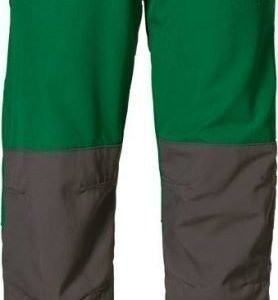 Jack Wolfskin Kids Rascal Pants Vihreä 116