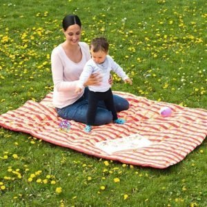 Molly picnic viltti