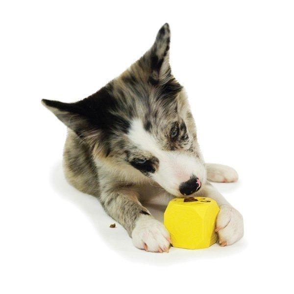 Petsafe BusyBuddy Puppy Biscuit Block