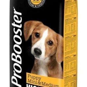 ProBooster Puppy Mini & Medium Chicken 15 kg