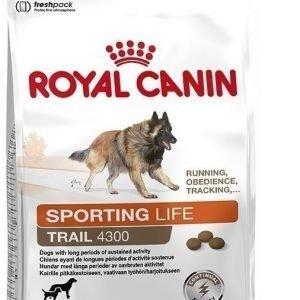 Royal Canin Dog Energy (Trail) 4300 15 kg