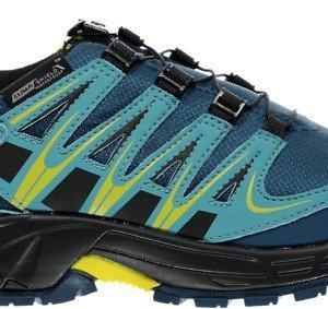 Salomon J Xa Pro Wp Boots Vaelluskengät
